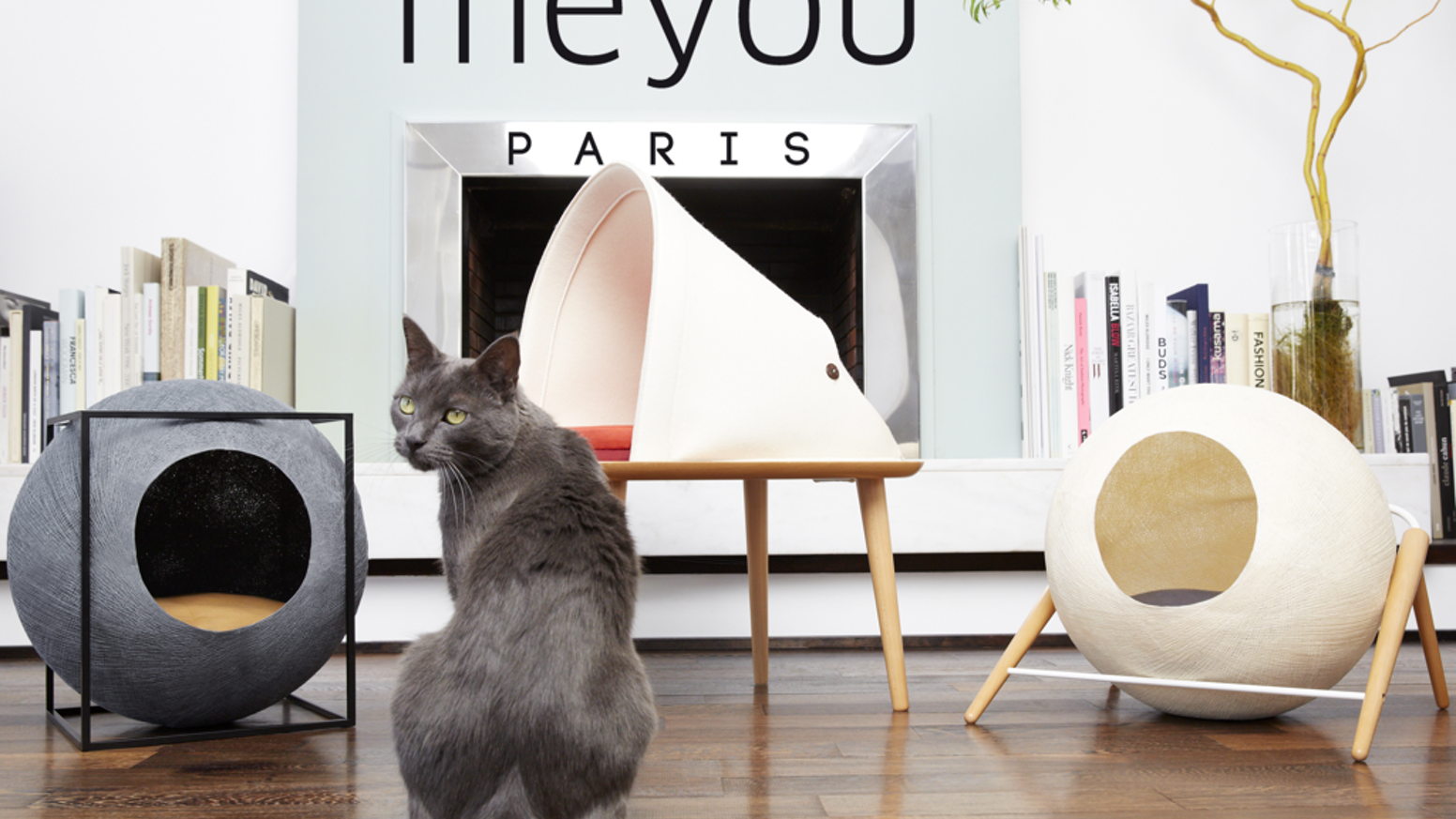 Meyou is reconciling our cat's needs with our design expectations.