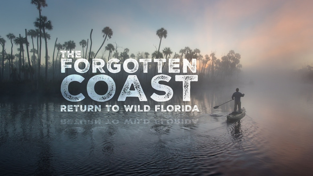 The Forgotten Coast: Return to Wild Florida project video thumbnail