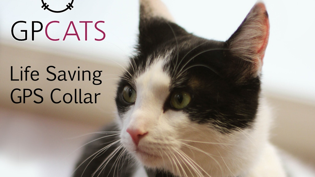 GPCATS - Life saving GPS tracker made specifically for cats project video thumbnail