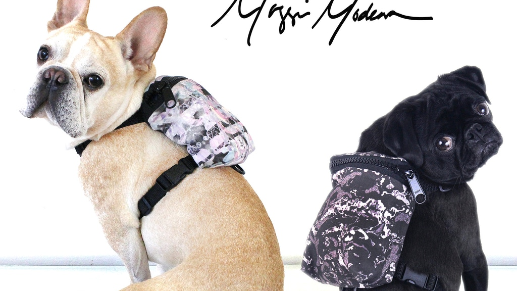Dog Pack - Harness & Backpack for Stylish Pups project video thumbnail