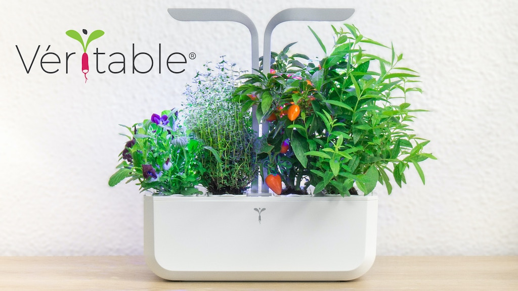 Véritable - The Autonomous Indoor Garden project video thumbnail