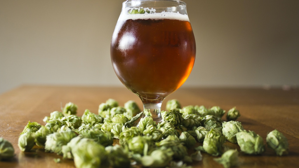 Round Table Hops: Where Beer Grows project video thumbnail