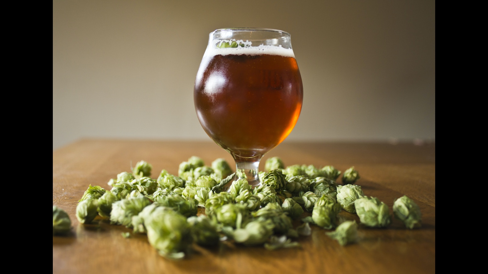 how to grow hops for beer