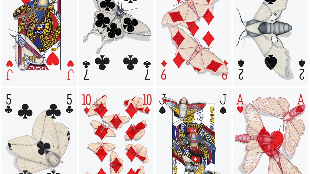 Cryptic Cards: A Curiously Camouflaged Playing Card Deck project video thumbnail