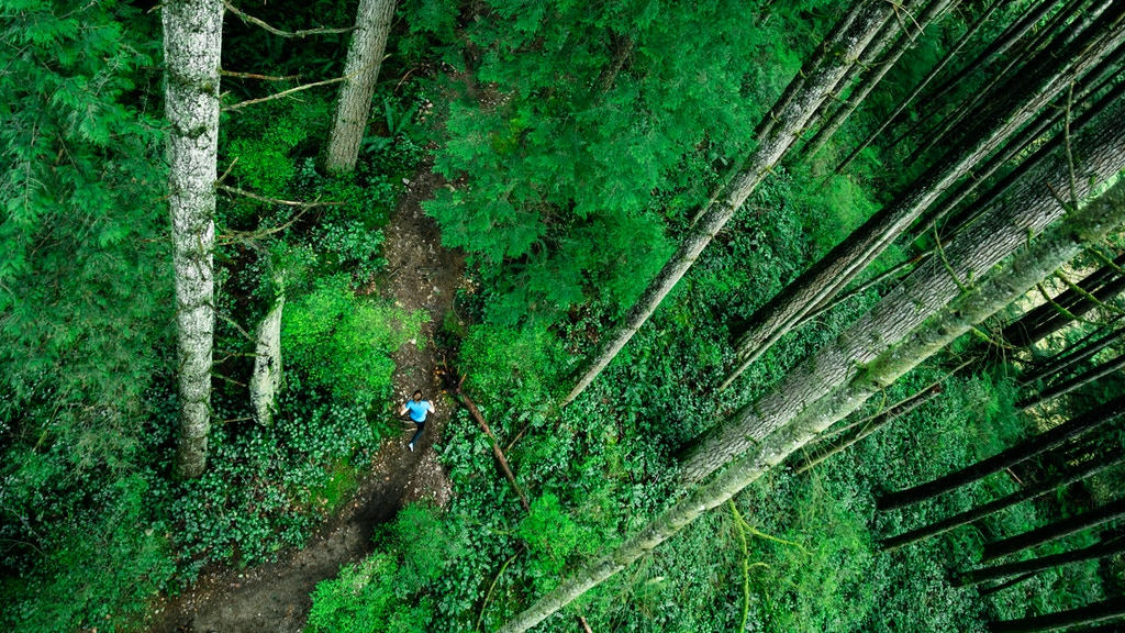 This is North Shore: Trail Running Calendar Benefiting NSR project video thumbnail