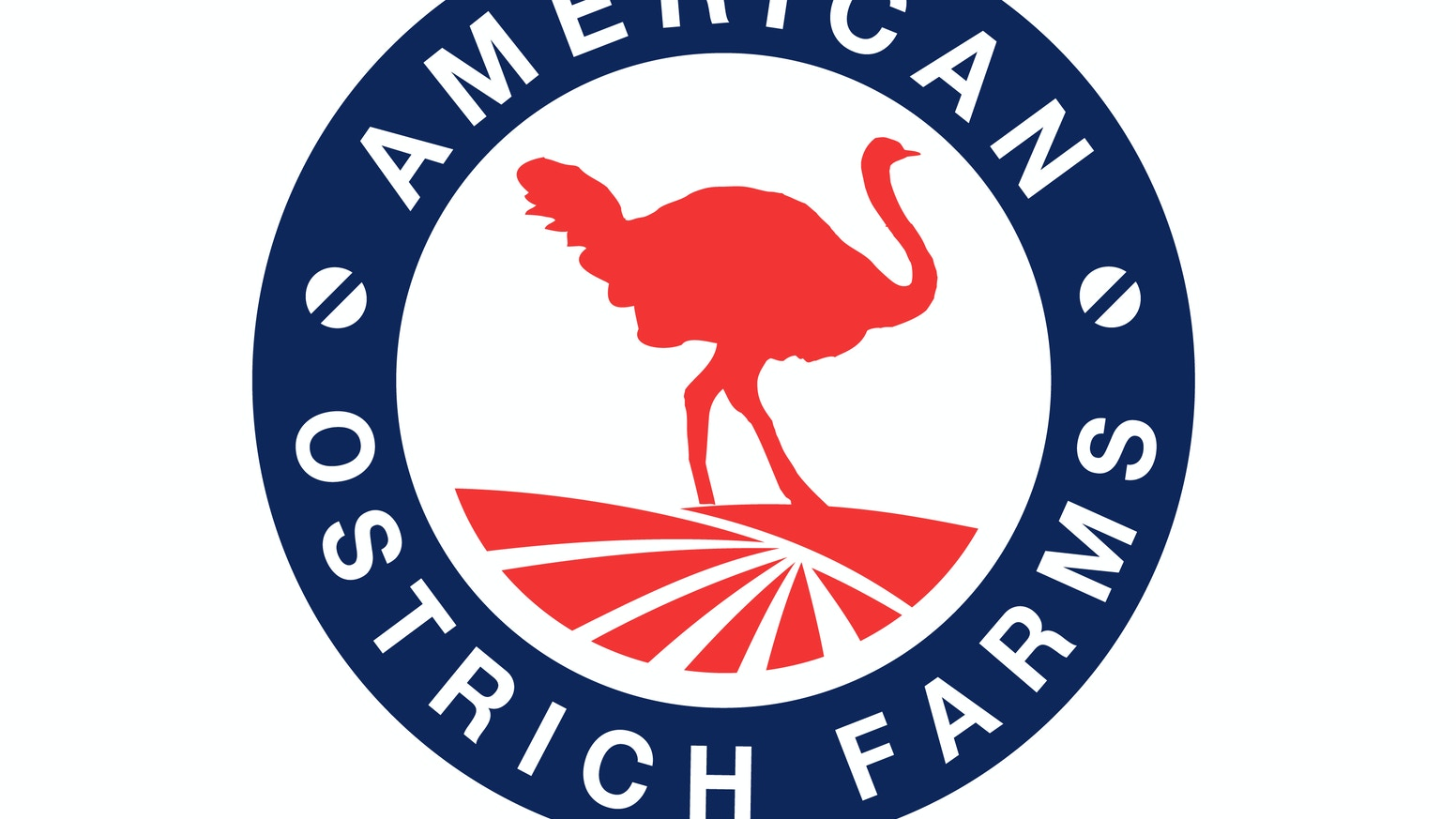 Our family is bringing Americans the most delicious, healthy, environmentally sustainable red meat in the animal kingdom – Ostrich!
