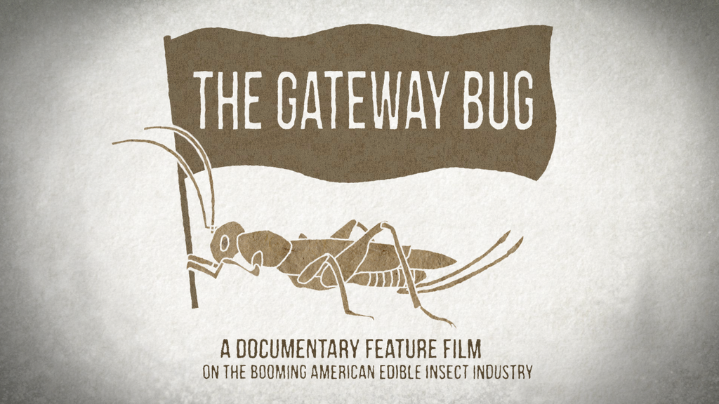 The Gateway Bug project video thumbnail