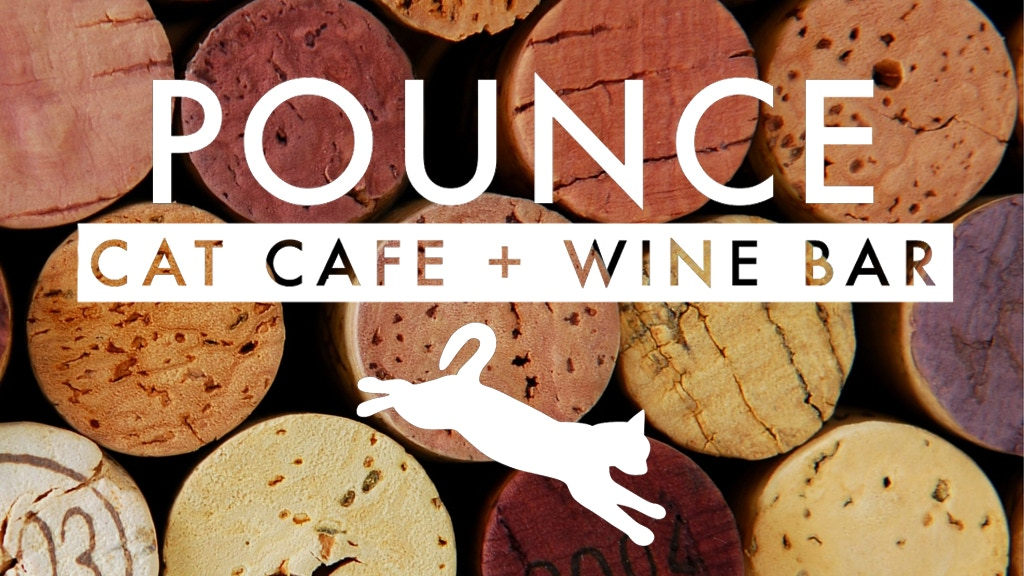Pounce Cat Cafe + Wine Bar: The South's First Cat Cafe project video thumbnail