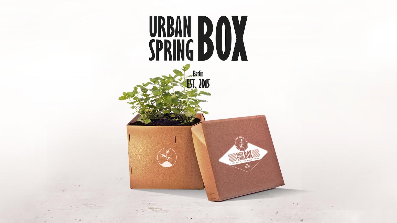 """Die """"Urban Spring Box"""" beinhaltet alles was du brauchst, um deine eigene Pflanze zu züchten. Regional, nachhaltig und vollkommen natürlich!"""