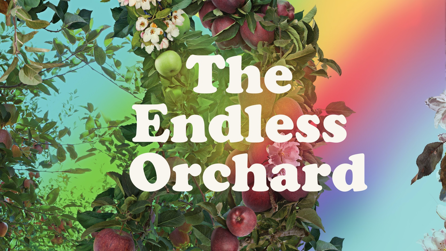 The Endless Orchard - a sustainable, edible, living public artwork- fruit trees planted and mapped by the public for everyone to share.