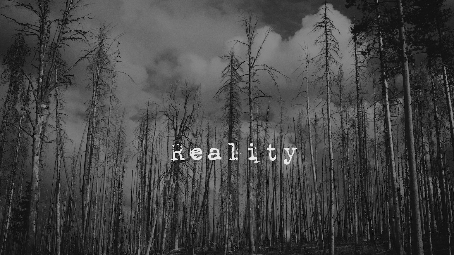Real Art Design Group Dayton Oh : Reality a short film project by christian gentry
