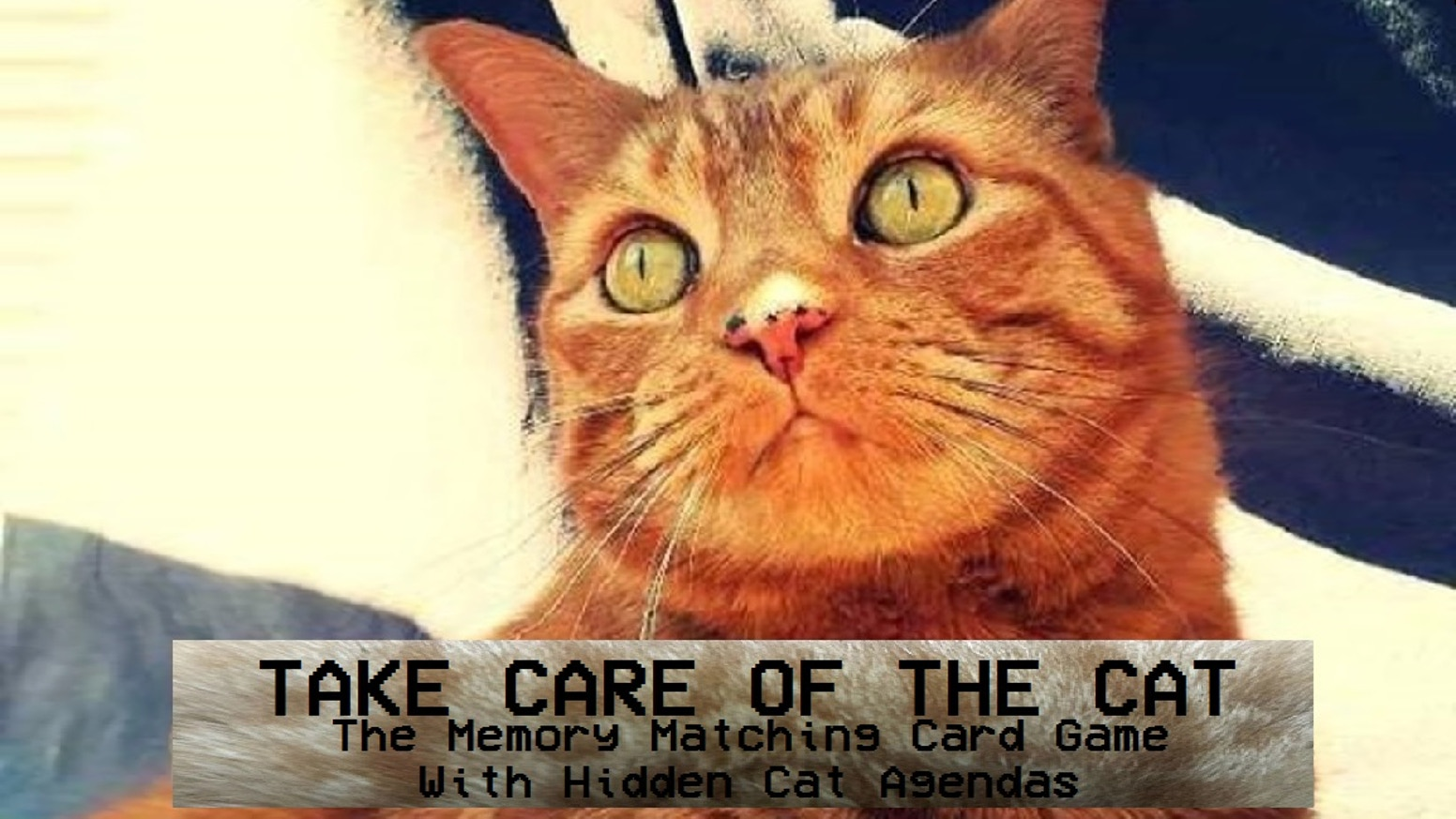 The memory matching card game with hidden cat agendas
