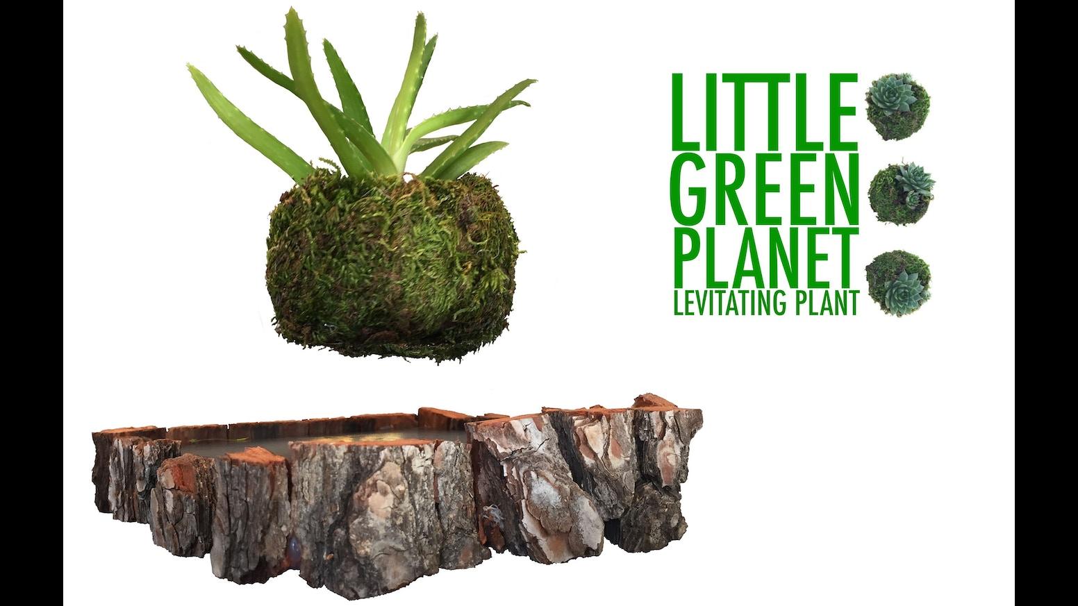 little green planet levitating air plant floating plant by desi6n devteam kickstarter. Black Bedroom Furniture Sets. Home Design Ideas