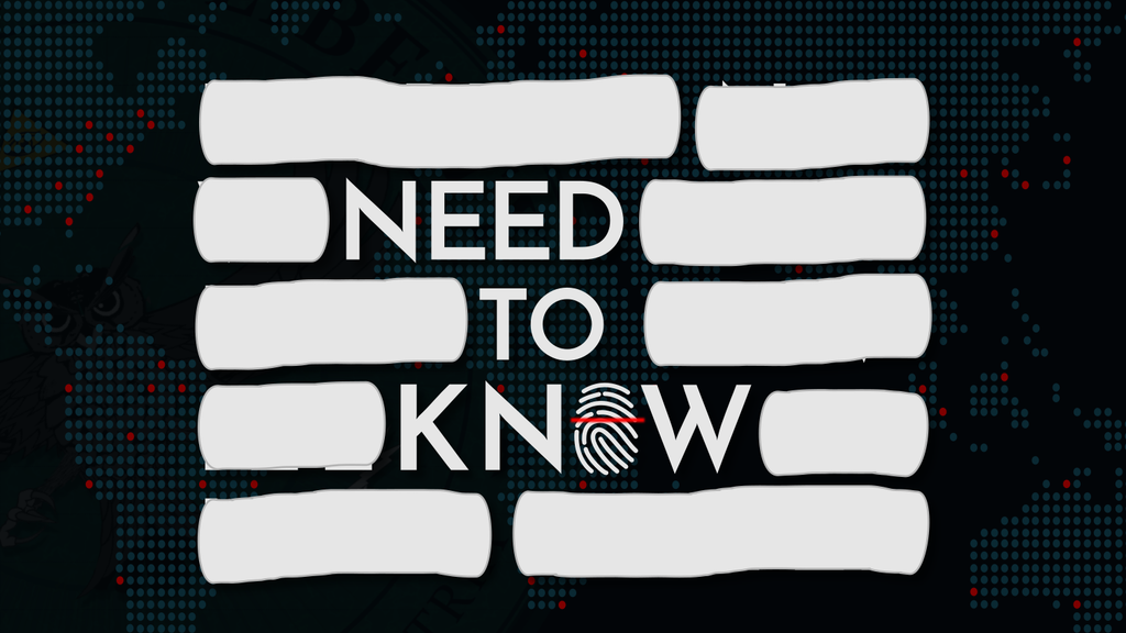 Need to Know - The Mass Surveillance Thriller Game project video thumbnail