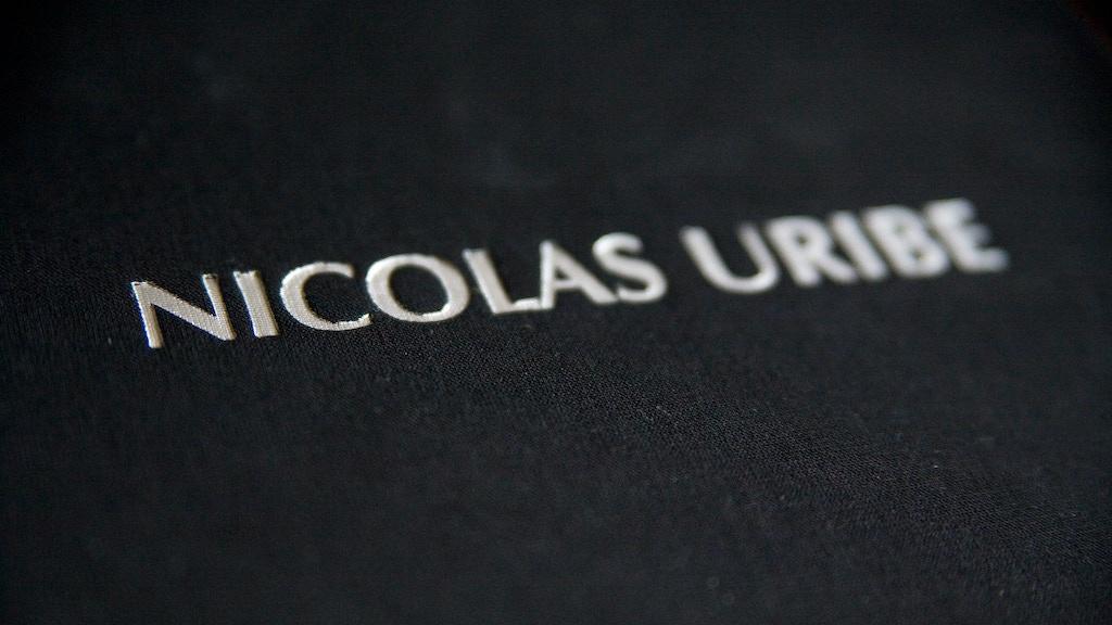 Nicolás Uribe - Painter project video thumbnail