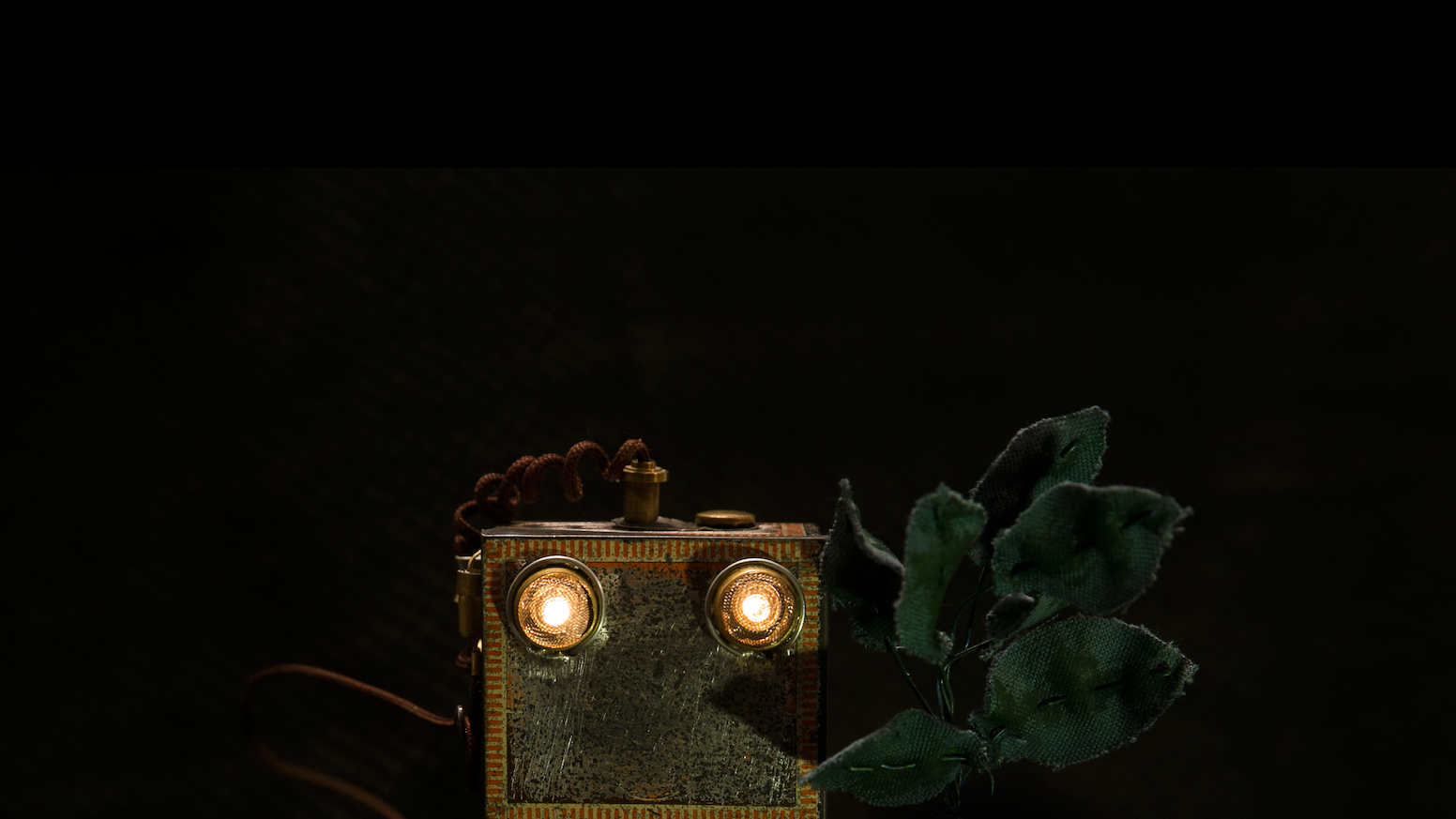 A stop-motion short film about a robot whose best friend is a plant.