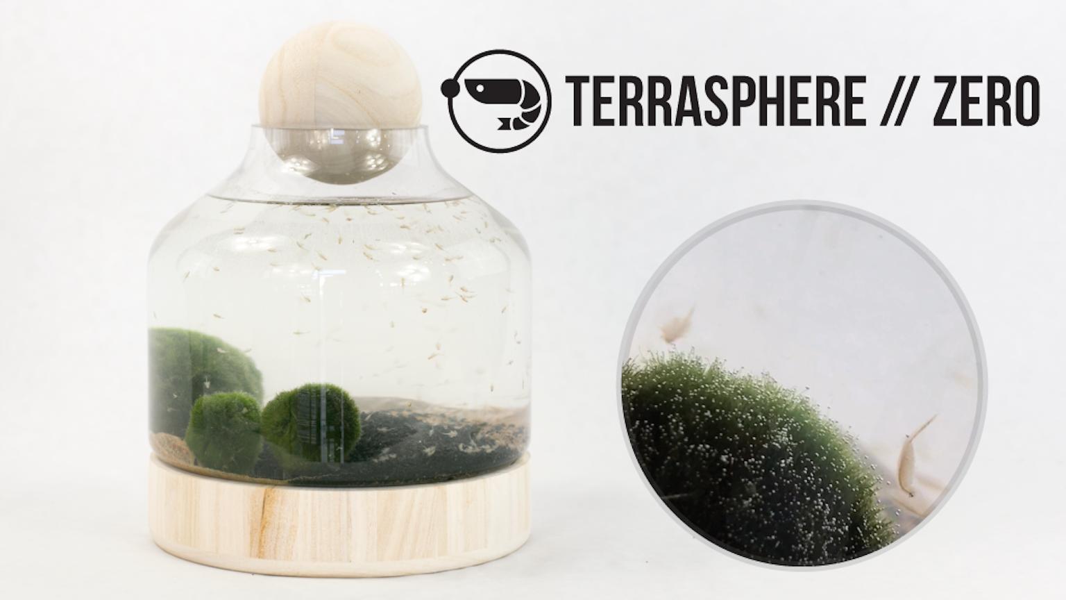 Terrasphere Zero Self Sustaining Terrariums By Mike Stone
