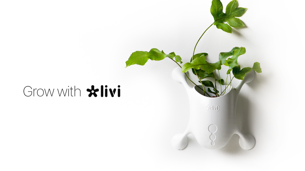 Livi | A New Way to Experience Plants project video thumbnail