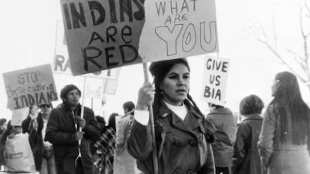 Freeman V. Morton:A Native American Civil Rights ...