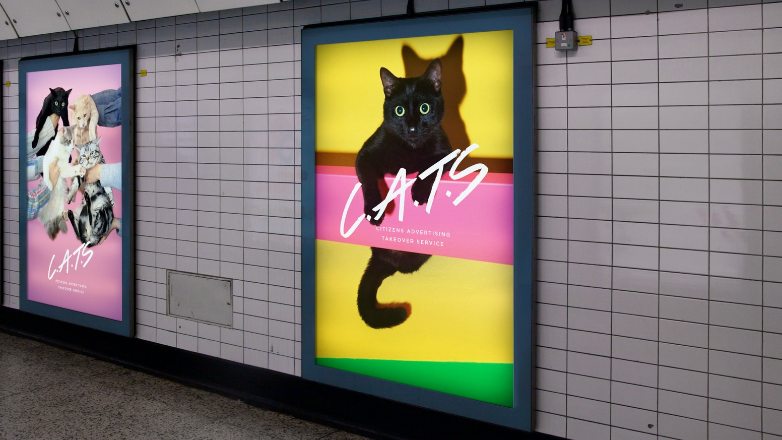 We took over Clapham Common station for two amazing weeks. You can find out more about the project and help with our next takeover at CatsNotAds.org