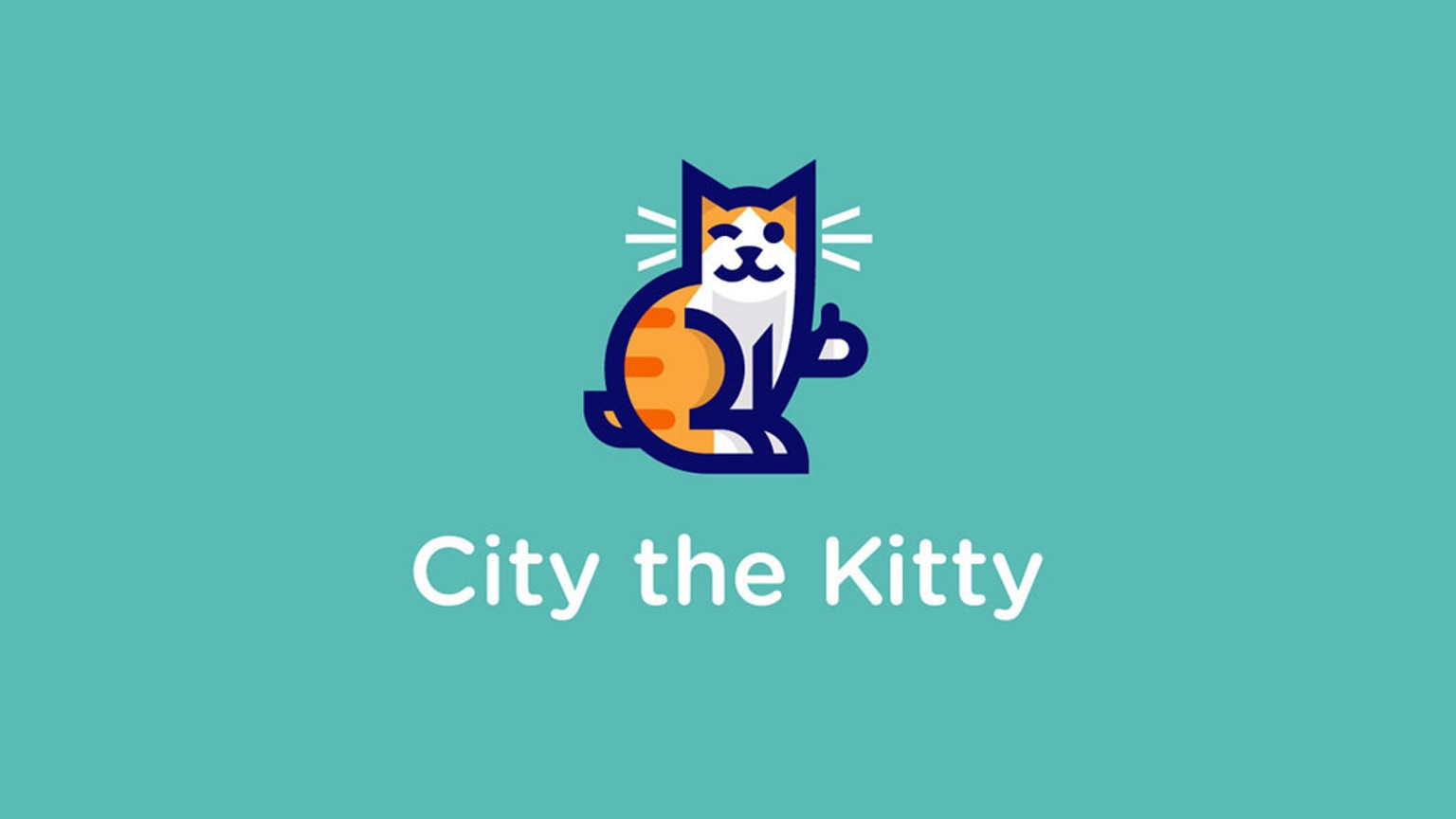 city the kitty my first inspirational photobook by city