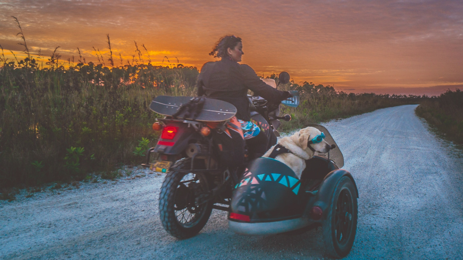Operation Moto Dog: A Sidecar Adventure - BOOK & FILM by Mallory
