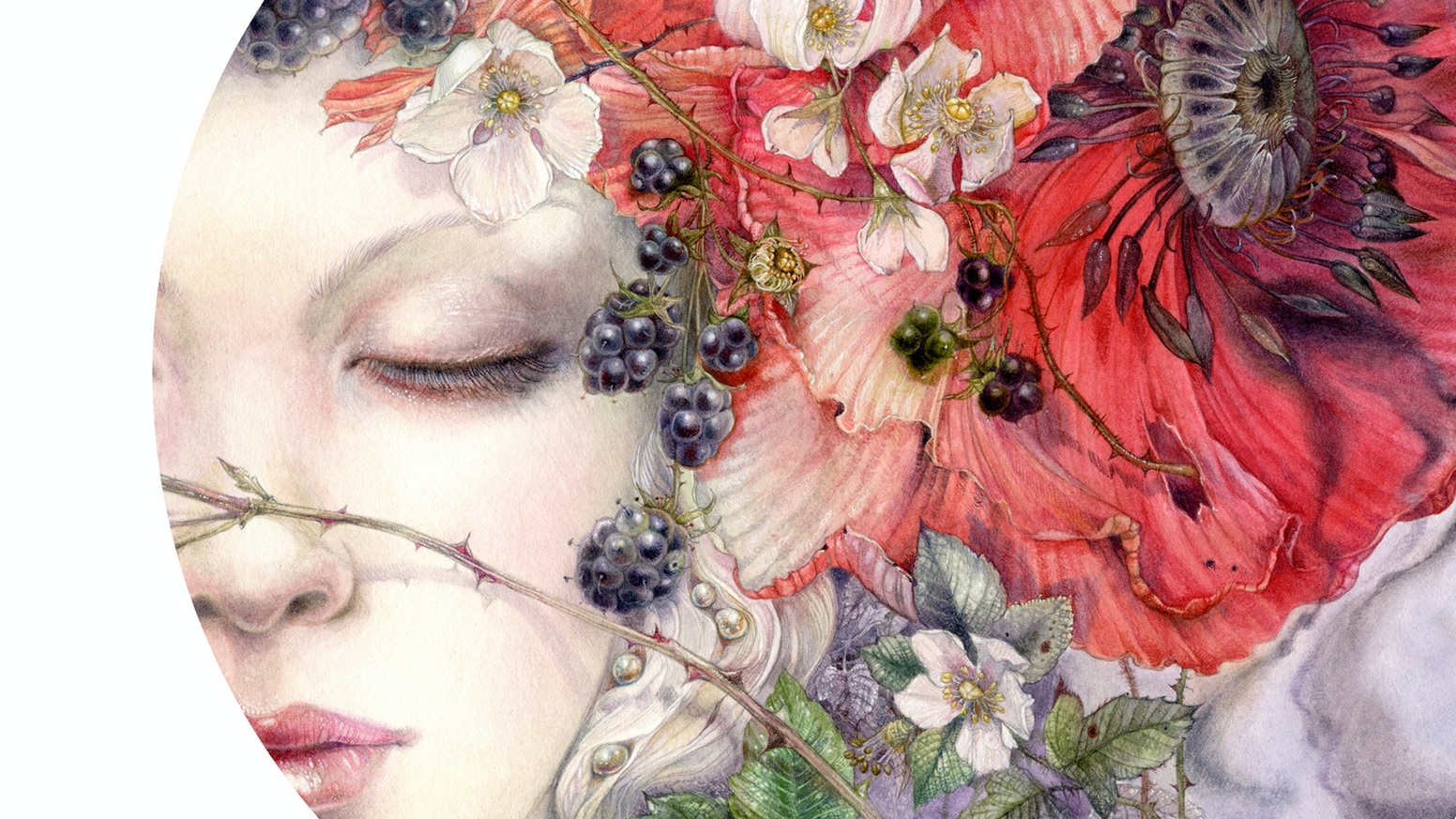From the artist of Shadowscapes Tarot & Dreamscapes series a new art book presenting fantastic worlds, insect visions, dream creations