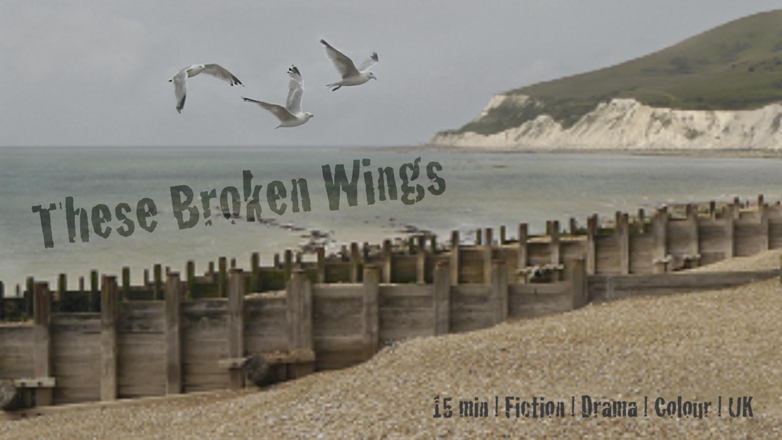 These Broken Wings by James Schlesinger — Kickstarter