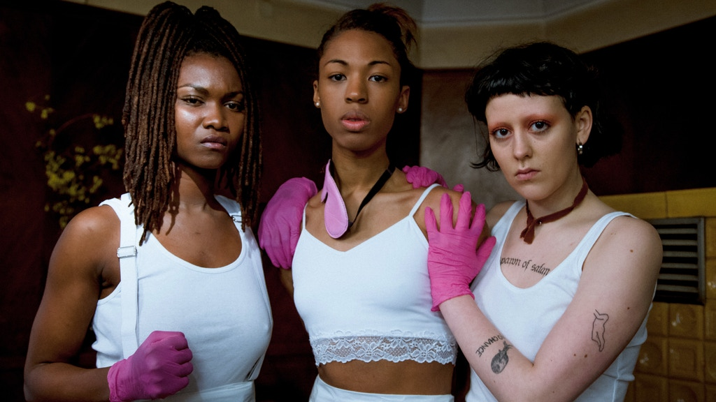 THE MISANDRISTS, A MOVIE BY BRUCE LABRUCE project video thumbnail