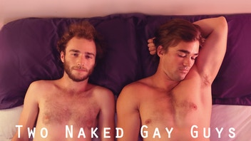 Two Naked Gay Guys Webseries