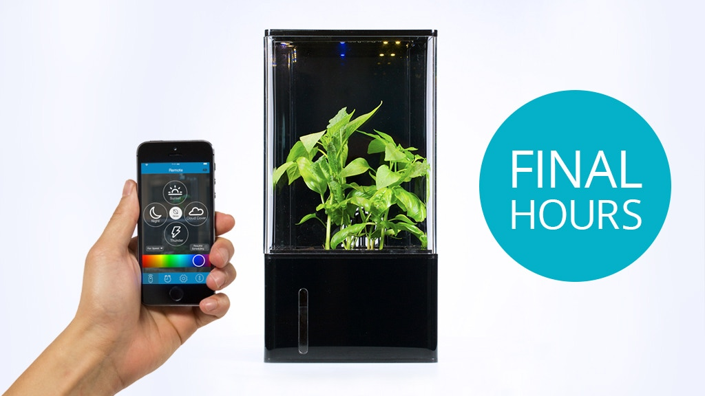 EcoQube Air - The World's First Desktop Greenhouse project video thumbnail