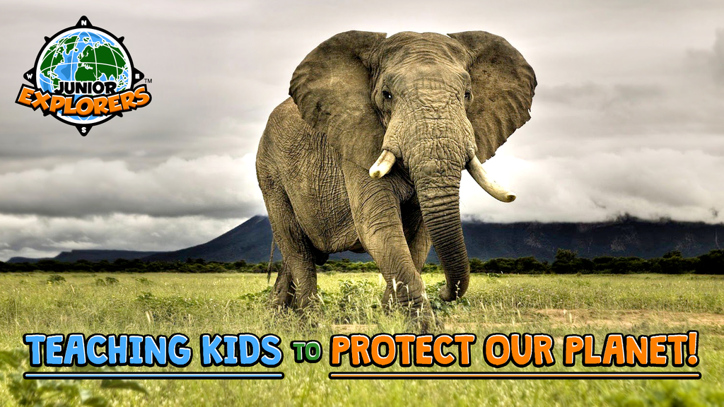 Junior Explorers — Games for Kids to Love Wildlife & Nature project video thumbnail