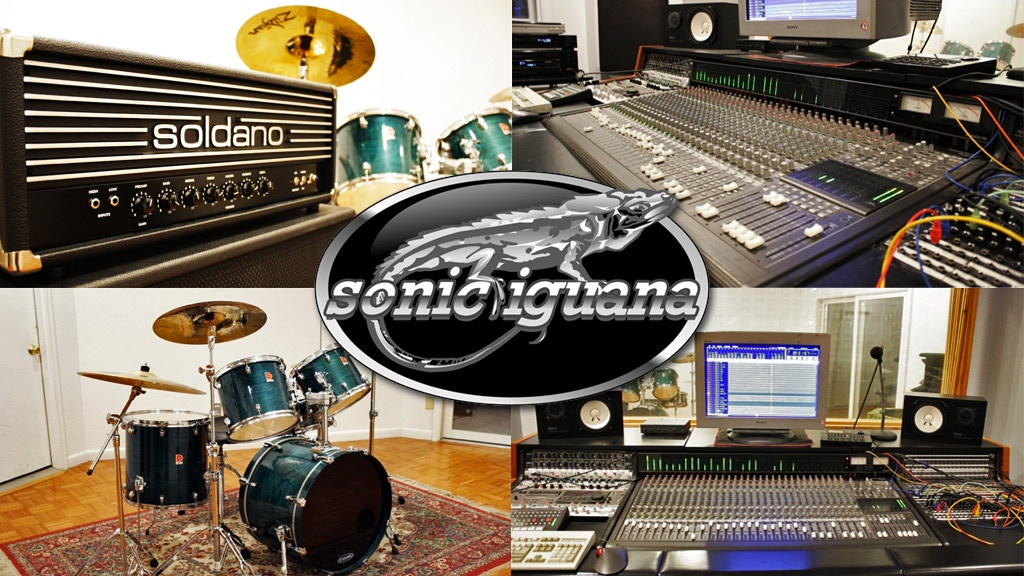 Save Sonic Iguana! project video thumbnail