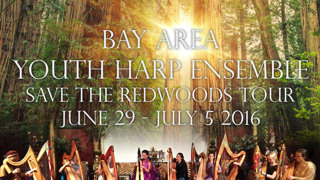 BAYHE Save the Redwoods Tour project video thumbnail