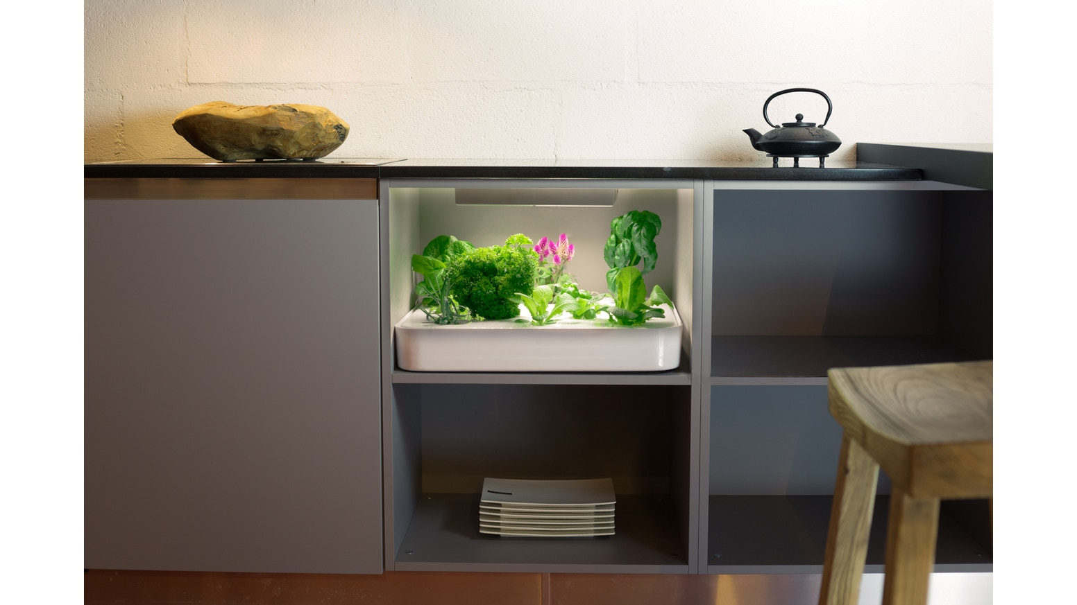 Herb Garden For Kitchen Vegidair The Herb Garden In Your Kitchen By Vegidair Kickstarter