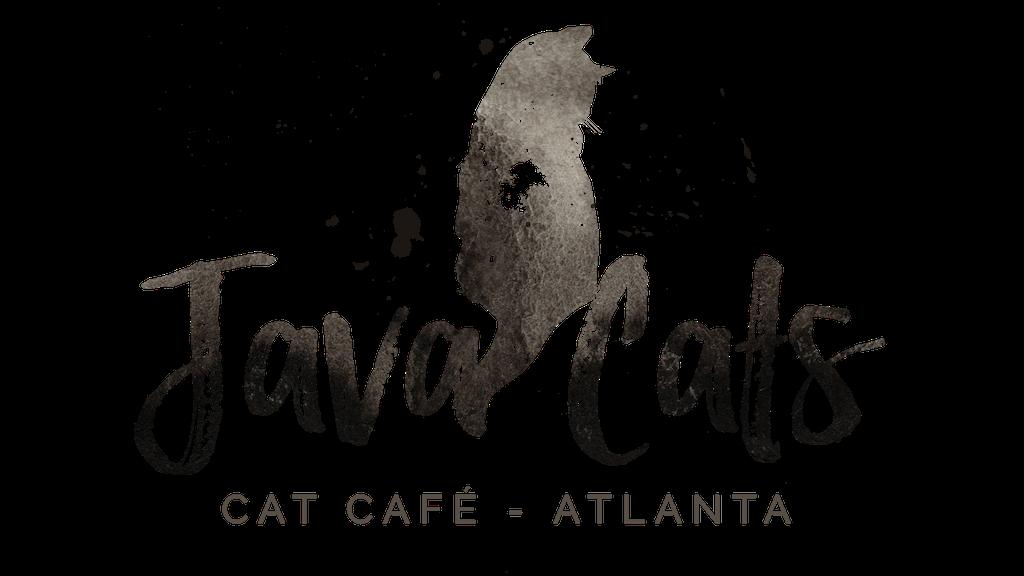 Java Cats Café- Atlanta, GA project video thumbnail