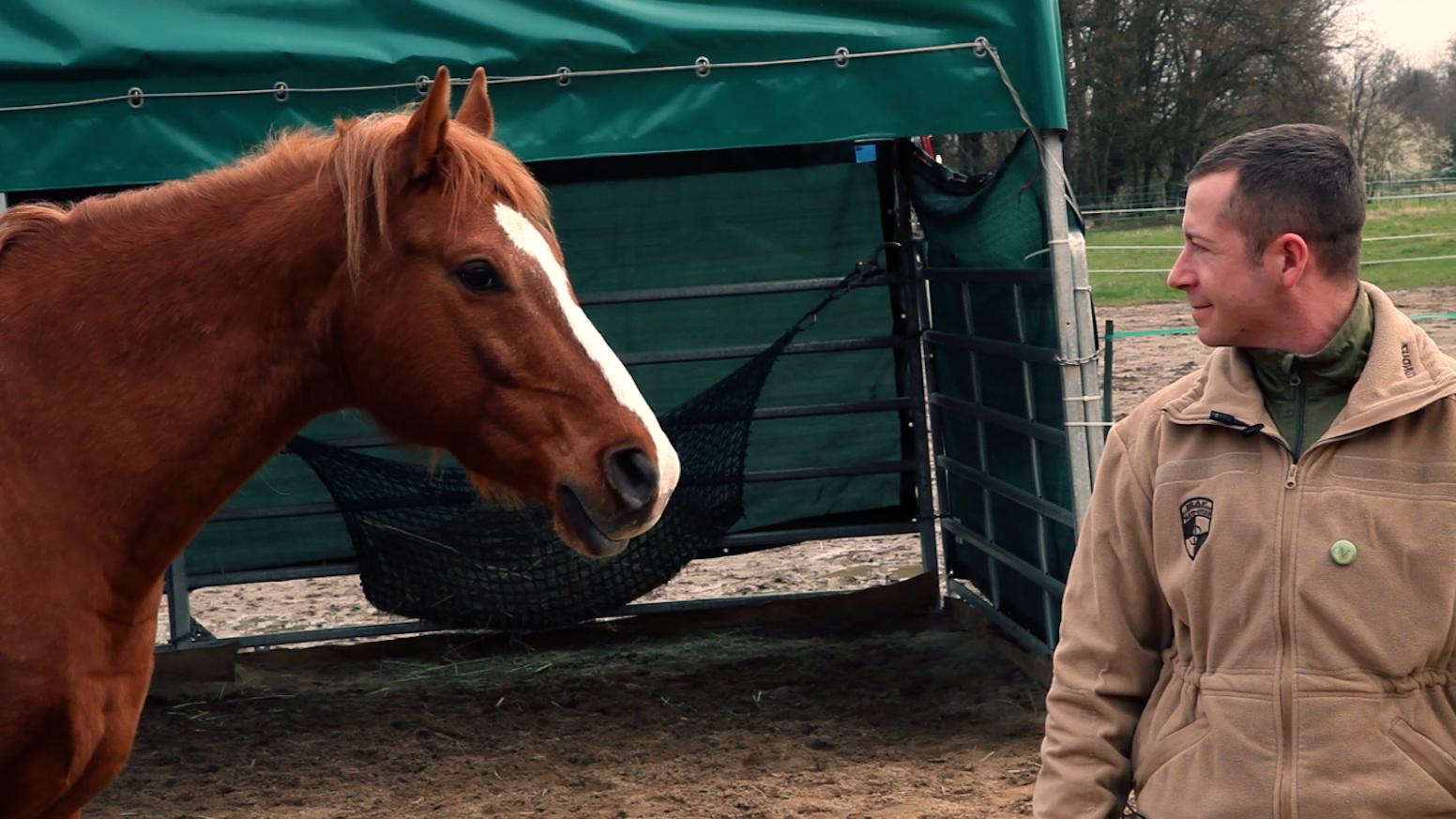 Ein 88-minütiger Dokumentarfilm portraitiert die Therapeutin Claudia Swierczek. Sie hilft mit ihren Pferden traumatisierten SoldatInnen
