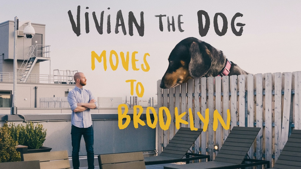 Vivian the Dog Moves to Brooklyn project video thumbnail
