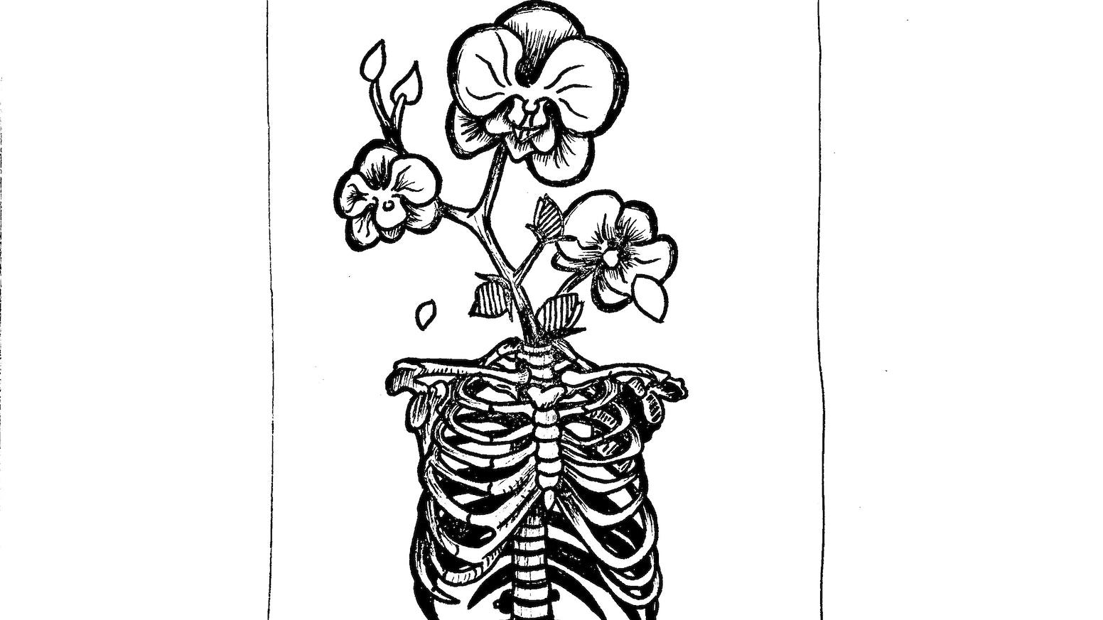 Spines by Adam J. Schooley — Kickstarter
