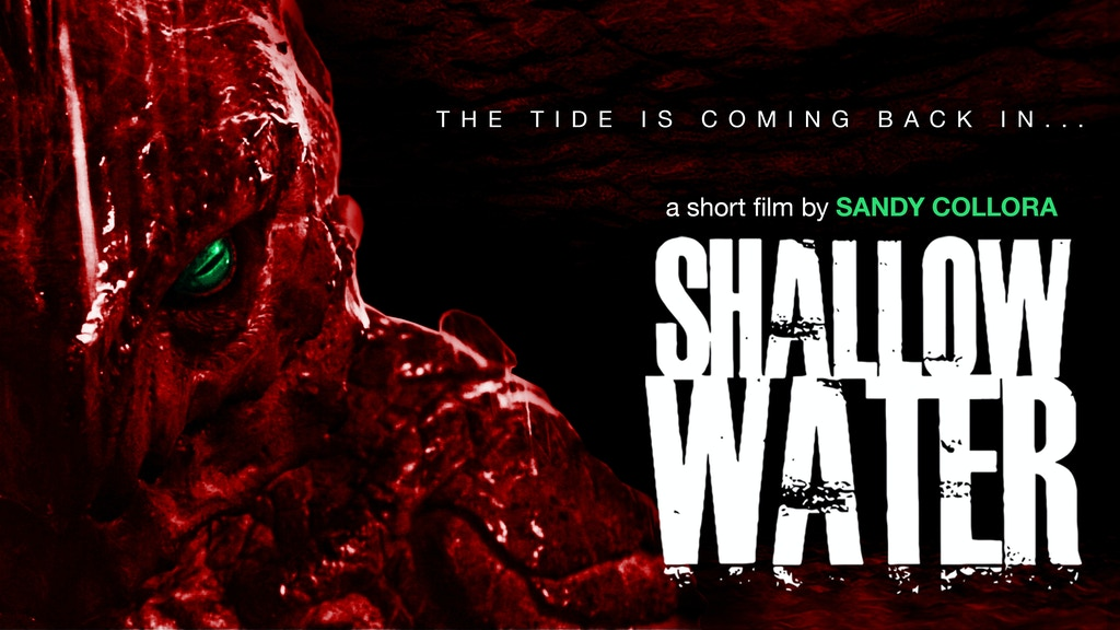 SHALLOW WATER: 2.0 project video thumbnail