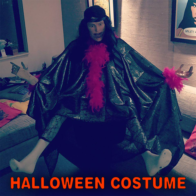 Halloween Costume Created by Master Artist Aylöfft Olive and Donated to The ERIC AND SHAYE Kickstarter Project! Includes 2 masks, spiderweb patterned gown & stockings, wig, pink feather boa, necktie headband, 2 mannequin legs, feet and hands.