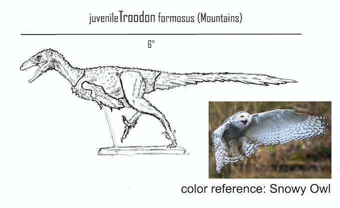 juvenile Troodon- Mountains