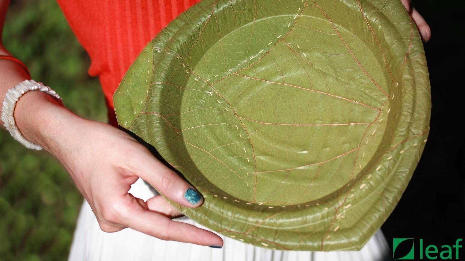 100% leaf one-way plates - flatrate offer by leaf republic