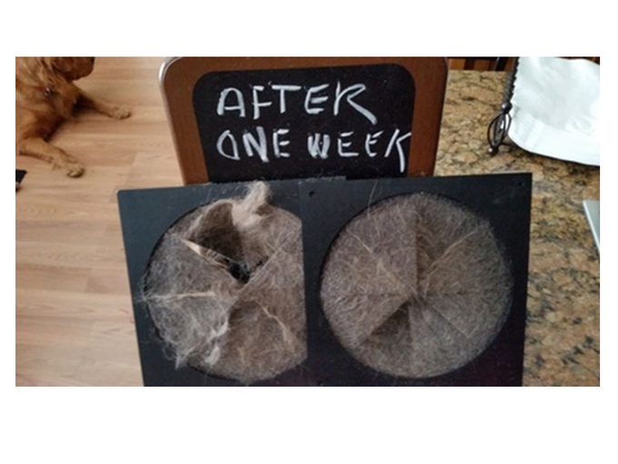 Used Groomer Discs after one week in the Purr-Fect Groomer.  This cat hair is on both sides of the Groomer Discs!