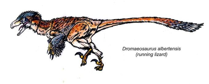 'Dromaeosaurus Fan's Choice action figure concept art'