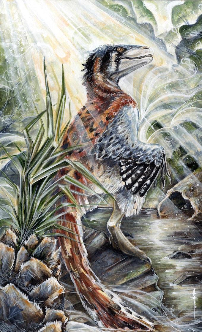 'Dromaeosaurus Fan's Choice package art by Sara Richard'