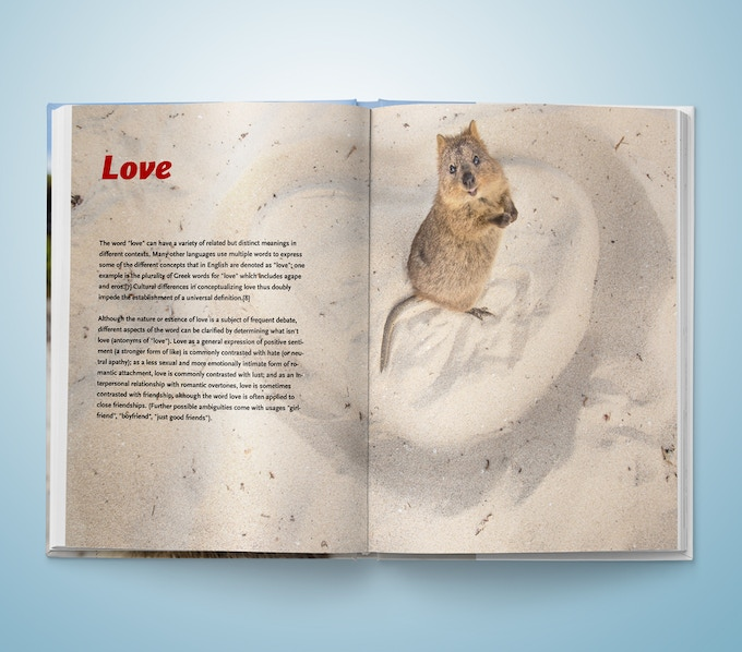 Quokka Photo Book - Example page Love