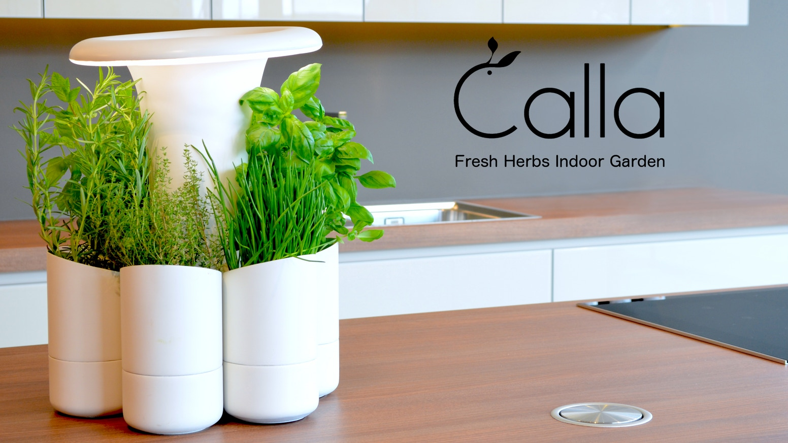 Keep your herbs healthy all year round and enjoy fresh and creative cooking with Calla.