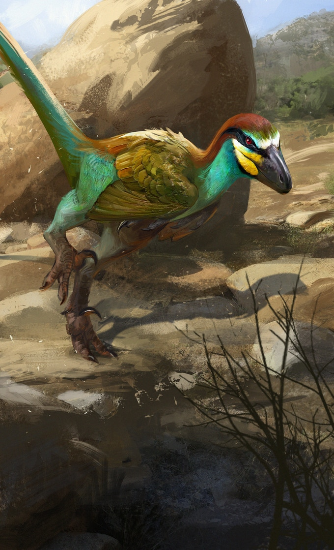 'Linheraptor package art by Jonathan Kuo'