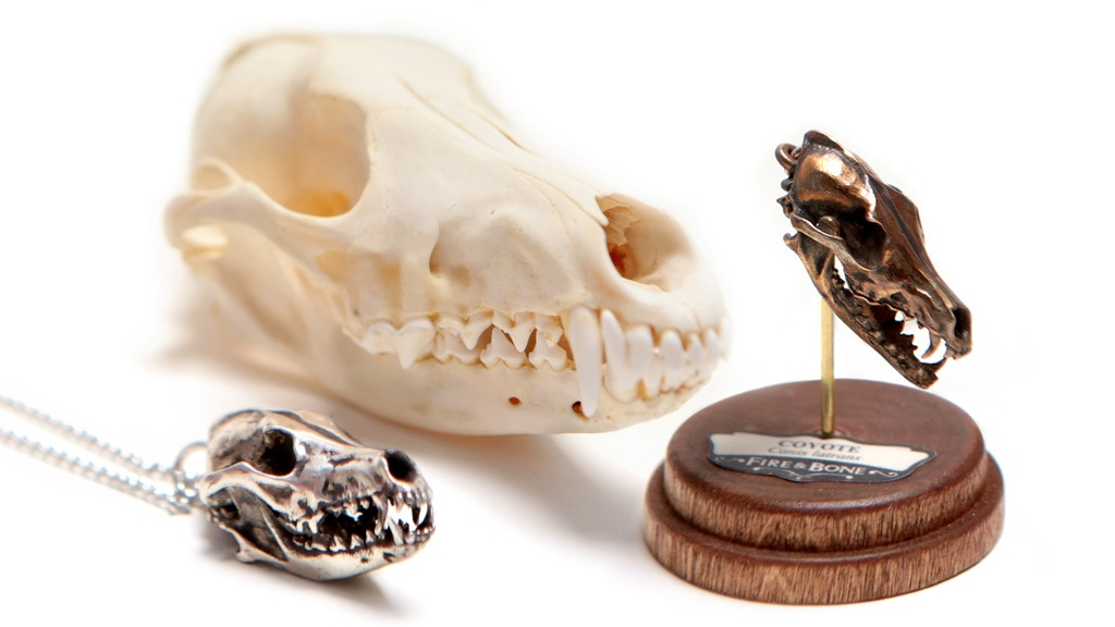 FIRE & BONE 4: Tiny, Digitally Captured, Metal Animal Skulls project video thumbnail